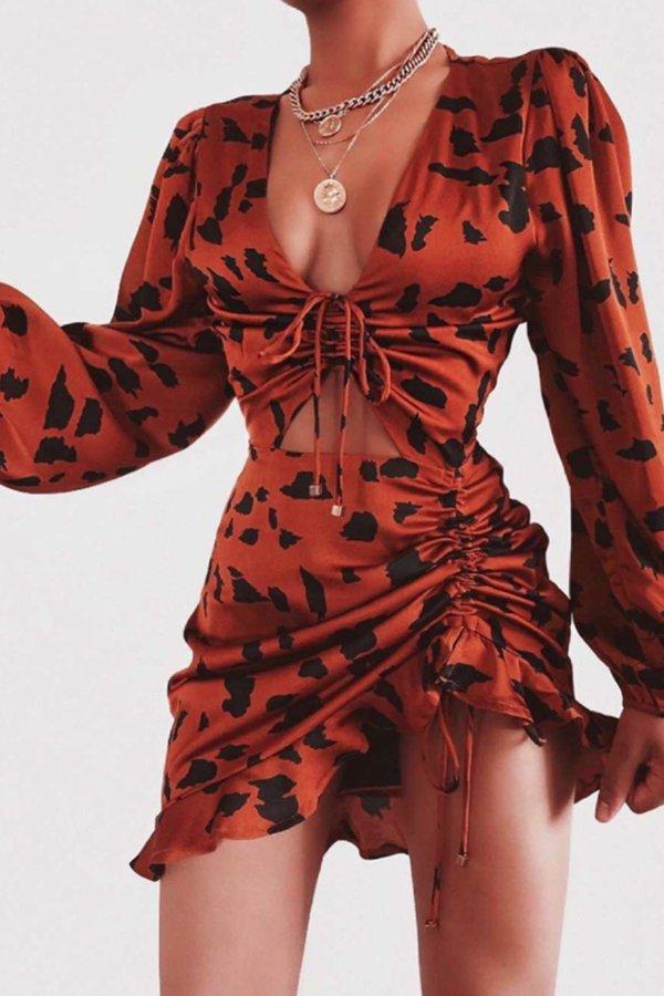 ΠΡΟΣΦΟΡΕΣ Agnese φόρεμα animal print